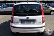 FIAT PANDA 1.2 DYNAMIC NATURAL POWER Usata 2009