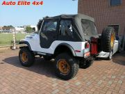 JEEP CJ-5 5.7 V8 GOLDEN EAGLE used car 1975